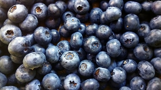 Closeup of blueberries which are good for you after a hair transplant
